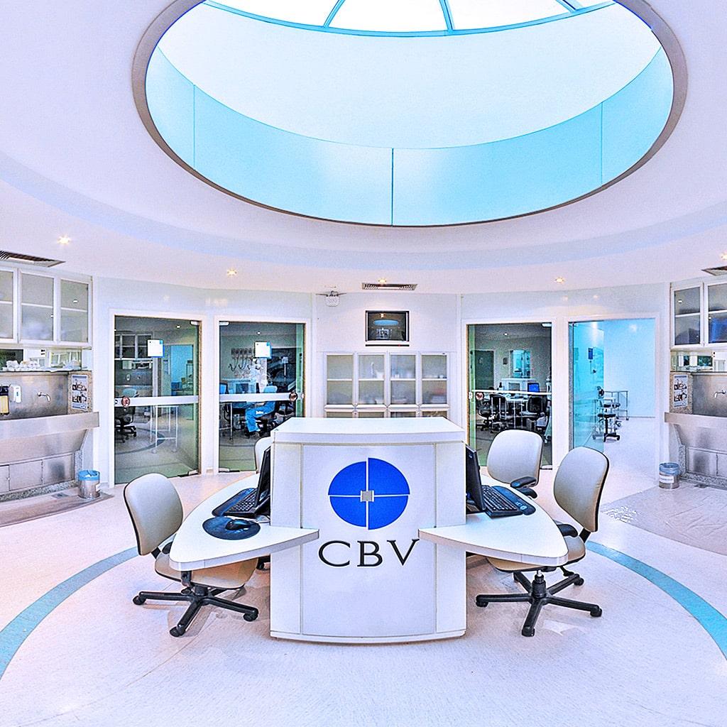 Cbv centro brasileiro da vis o 3603d tour virtual for Oficina veterinaria virtual